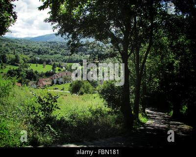 Country Road Leading Towards Houses - Stock Photo