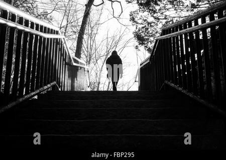 Silhouette Person Walking On Staircase In Park - Stock Photo