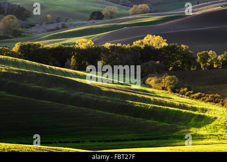 Colorful spring rural landscape in Tuscany, Italy - Stock Photo