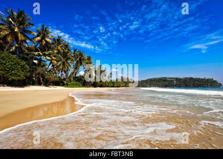 Idyllic beach. Sri Lanka - Stock Photo