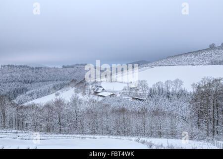 German countryside blanketed with snow in Sauerland, Hochsauerland Höhenstrasse, Schmallenberg, North Rhine-Westphalia, - Stock Photo