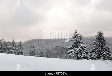 Winter landscape covered in fresh snow in Girkhausen, Bad Berleburg, Sauerland, North Rhine-Westphalia, Germany. - Stock Photo