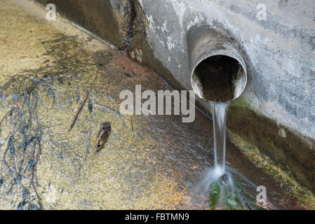 Drainage pipe protruding from a concrete wall into a stream. - Stock Photo