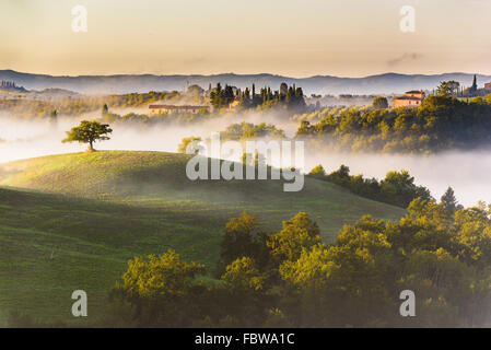 Trees and orchards on the Italian fields. Tuscany autumn day. - Stock Photo