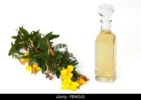 Evening primrose with oil bottle - Stock Photo