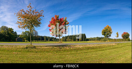 nature park Franconian Forest - Stock Photo