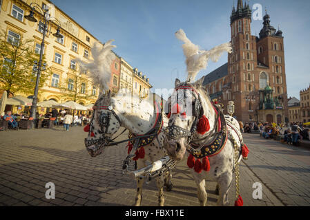 KRAKOW, POLAND - November 13, 2015: Horse carriages at main square in Krakow in a autumn day, Poland on November - Stock Photo