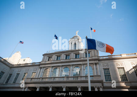 Flags fly in the cold wind in front of New York City Hall on Tuesday, January 19, 2016. (© Richard B. Levine)