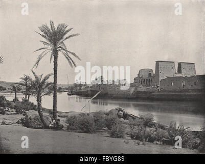 PHILAE. The island, with the Temple of Isis. Egypt, antique print 1895 - Stock Photo