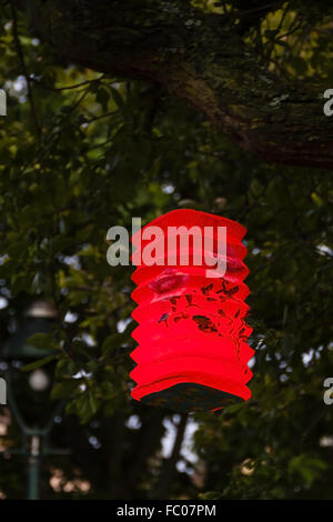 Paper lamp in a tree - Stock Photo