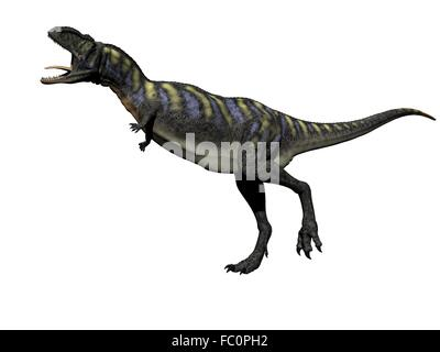 aucasaurus dinosaur - 3d render - Stock Photo