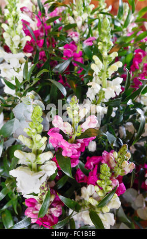 Big Wonderful Lupine Flowers Bouquet