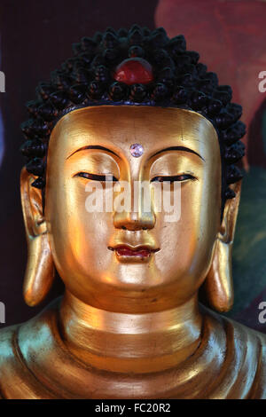 Hong Hien Tu temple. Buddha statue. Siddhartha Gautama. - Stock Photo