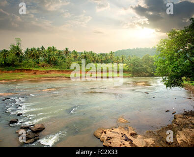 River in jungle of Sri Lanka at sunset - Stock Photo