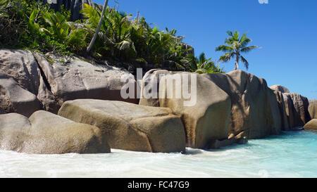amazing natural beach on seychelles - Stock Photo