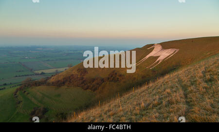 Bratton, Wiltshire, UK. 20th January 2016. The oldest chalk White Horse in Wiltshire was bathed in the orange glow - Stock Photo