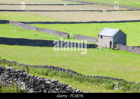 Old stone barn and walls around fields near Castleton, Derbyshire, Peak District National Park, England, UK - Stock Photo