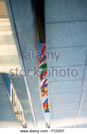 EU flags reflected in puddle - Stock Photo
