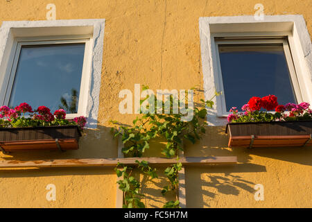 Window with geraniums in flower boxes - Stock Photo