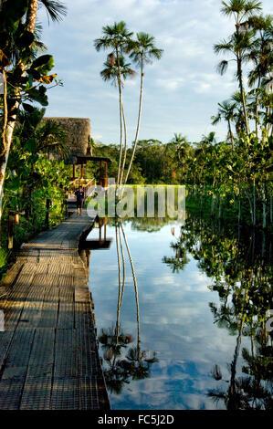 Lodge on the Amazon River in Ecuador - Stock Photo