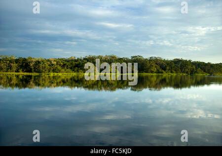 Reflections on the amazon River in Ecuador - Stock Photo