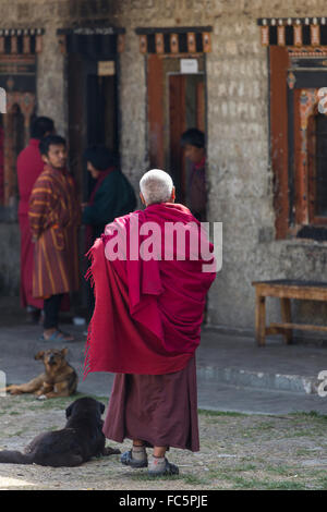 Buddhist Monk at Tamshing Temple, Jakar, Bumthang, Central Bhutan, Asia - Stock Photo