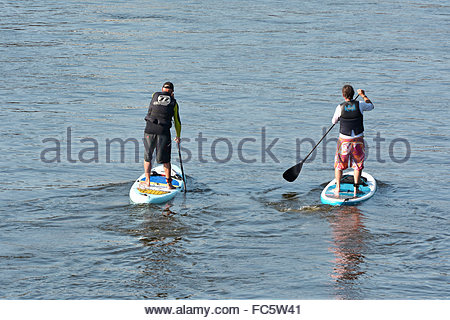 Stand Up Paddling on the river Elbe - Stock Photo