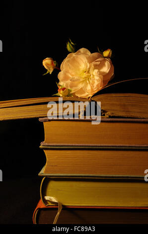 Old book with rose - Stock Photo