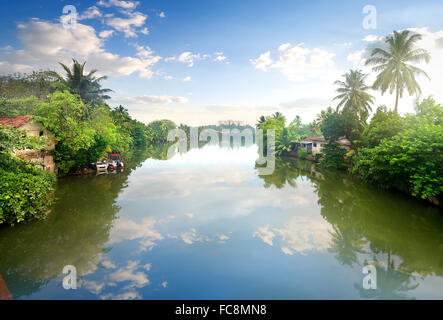 Small houses on a river in junles of Sri Lanka - Stock Photo