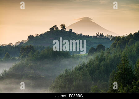 View of Mount Muhavura (4127m), one of three volcanic peaks in the Mgahinga Gorilla National Park in southern Uganda, - Stock Photo