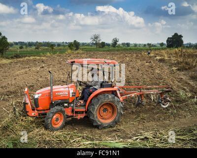 Nong Ya Khao, Nakhon Ratchasima, Thailand. 21st Jan, 2016. A farmer tills his cassava field in Nakhon Ratchasima - Stock Photo