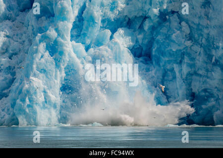 Calved icebergs from the South Sawyer Glacier in Tracy Arm-Fords Terror Wilderness Area in Southeast Alaska, USA