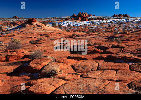 Coyote Buttes North, fragil sandstone formed by wind and water, Paria Wilderness Area, Arizona, United States of - Stock Photo