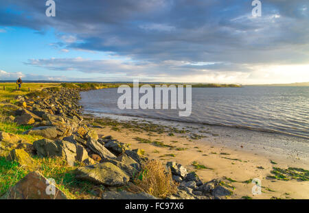 View of the Northam Burrows - Stock Photo
