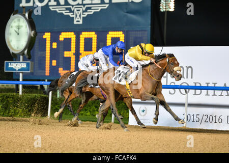 Dubai, UAE. 21st January, 2016. Christopher Hayes  on Top Clearance, wins the District One Mansions race ahead of - Stock Photo