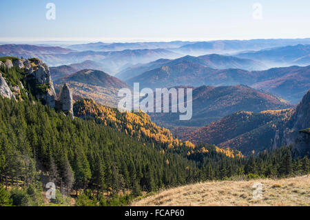 View over misty valley, autumn forest with beautiful colors - Stock Photo
