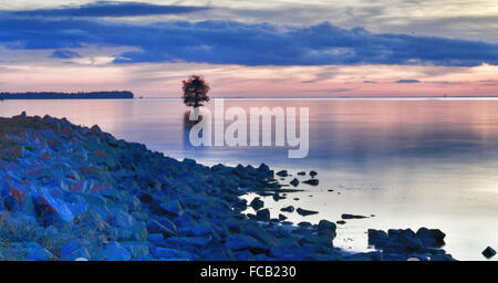 Lone Tree In Calm Sea Against Sky At Dusk - Stock Photo