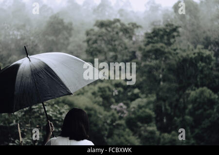 Rear View Of Woman With Umbrella With Trees In Background - Stock Photo