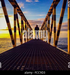 Rear View Of Woman Standing At The Edge Of Pier On Lake - Stock Photo