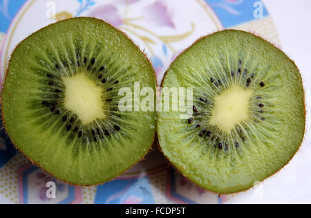 Actinidia chinensis var deliciosa, Kiwi, tropical fruit with brown hairy rough surface and green sweet juicy flesh, - Stock Photo