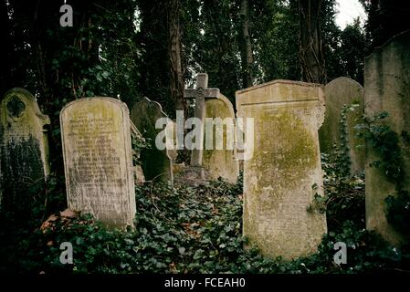 Group of tombstones and crosses in Tower Hamlets Cemetery Park in East London, England, UK, Europe. - Stock Photo