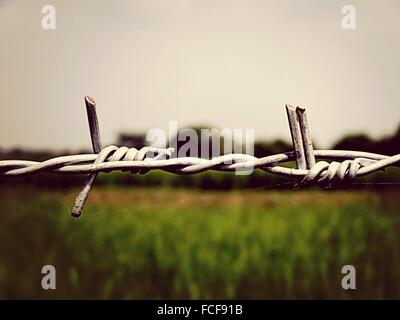 Close-Up Of Barbed Wire Against Field - Stock Photo