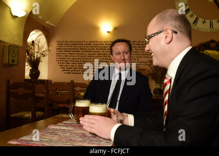 Hradcany Square, Prague. 22nd Jan, 2016. British Prime Minister David Cameron (left) and his Czech counterpart Bohuslav - Stock Photo
