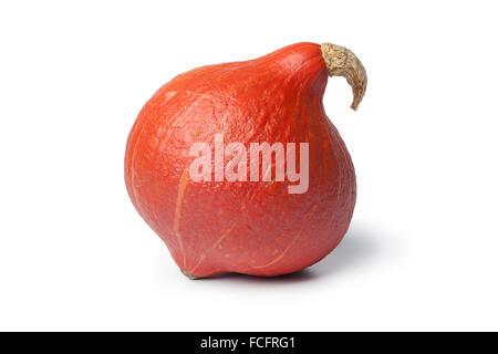 Fresh whole hokkaido pumpkin on white background - Stock Photo