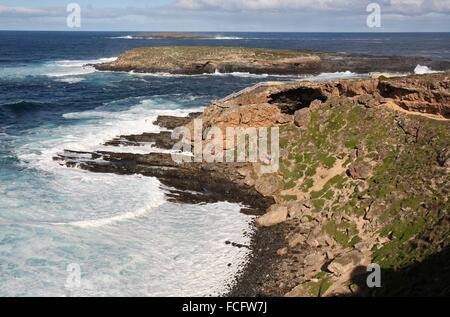 Admirals Arch at Cape Du Cuoedic. Kangaroo Island, South Australia. - Stock Photo