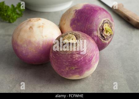 Fresh raw white turnips - Stock Photo