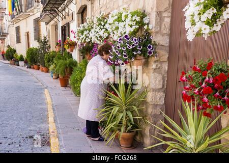 macetas de flores en la calle, Iznatoraf, Loma de Ubeda, provincia de Jaén en la comarca de las Villas, spain, europe. - Stock Photo