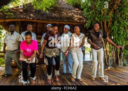 Staff members of the Lebala Safari Camp at the Kwando Concession do a traditional singing and dancing performance, - Stock Photo