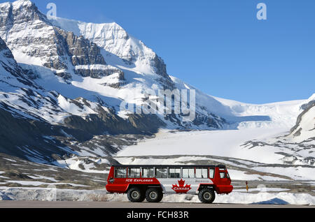 Jasper Car Lots >> snow bus in front of the Athabasca Glacier of the Columbia-Icefield Stock Photo, Royalty Free ...