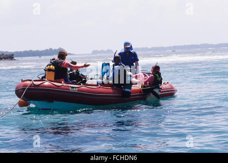 Republic of Palau, Live aboard scuba dive operation, dive tender with divers getting in water - Stock Photo